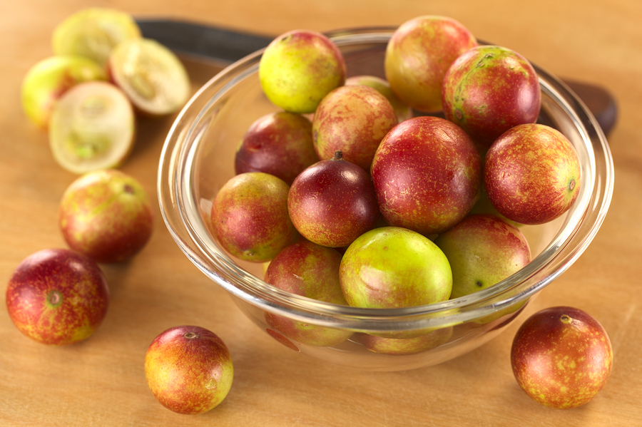 benefits of camu berry