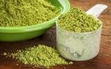 aduna moringa benefits
